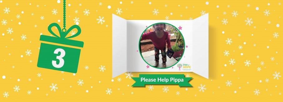 Pippa Web Banner
