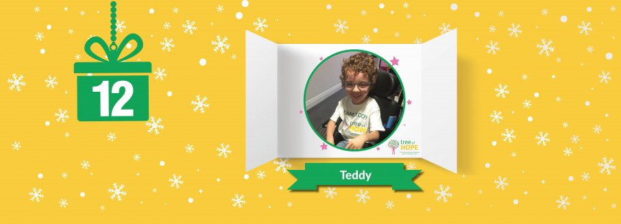 teddy web banner
